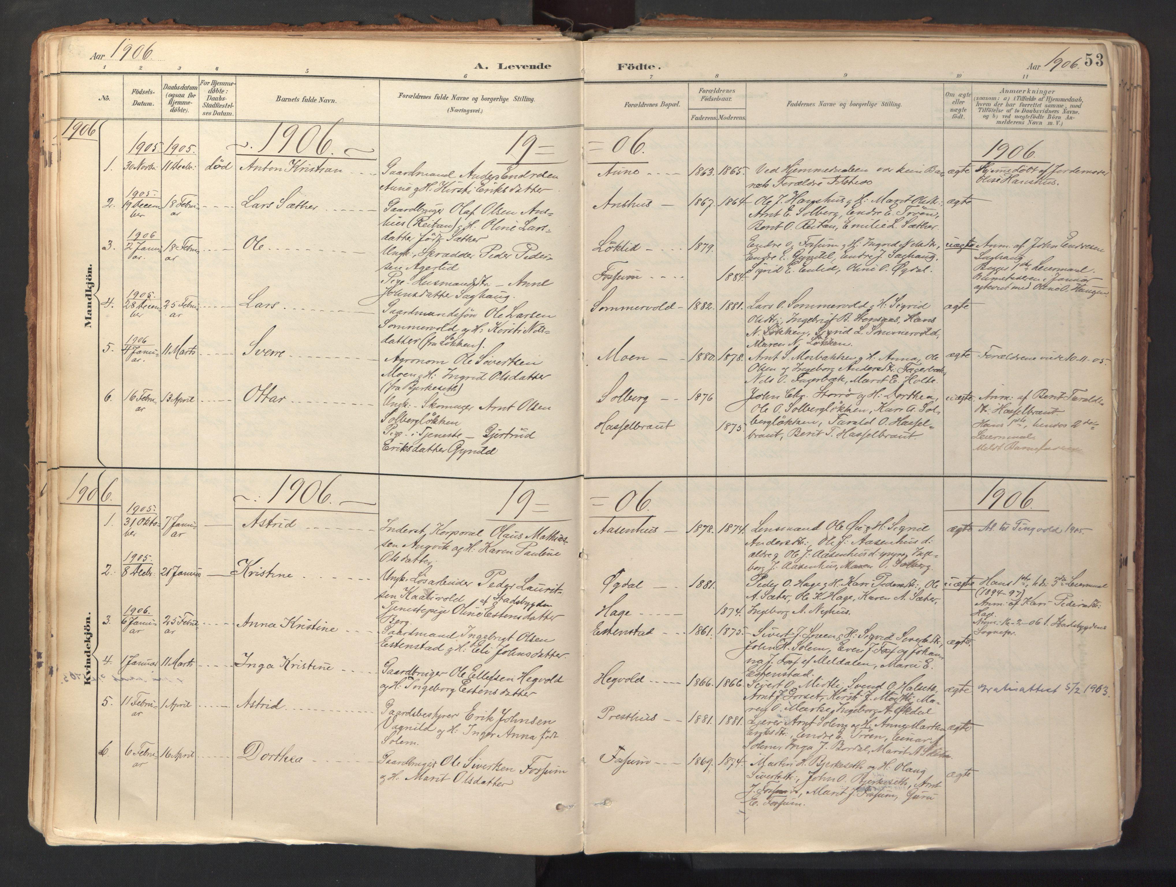 SAT, Ministerialprotokoller, klokkerbøker og fødselsregistre - Sør-Trøndelag, 689/L1041: Ministerialbok nr. 689A06, 1891-1923, s. 53