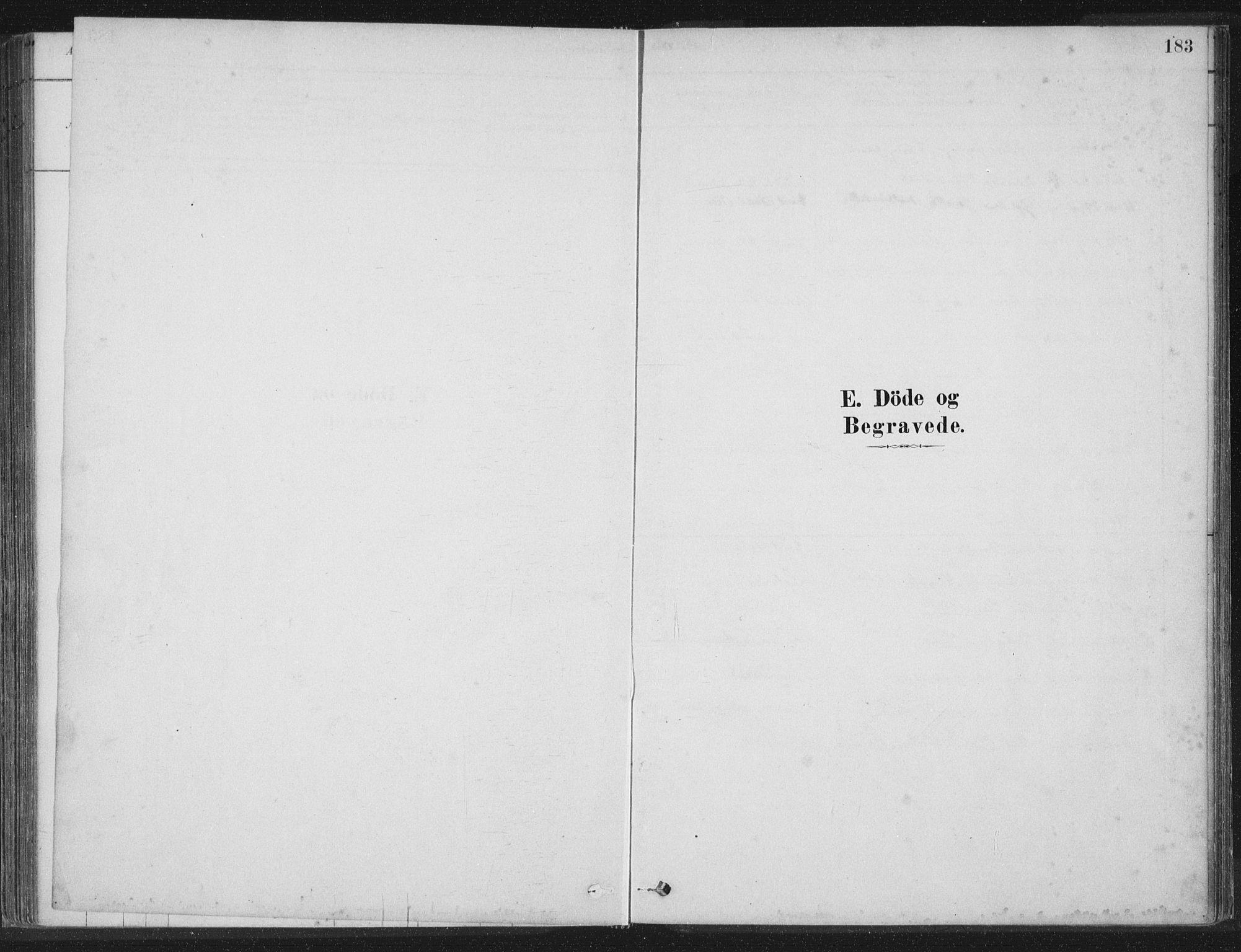 SAT, Ministerialprotokoller, klokkerbøker og fødselsregistre - Nord-Trøndelag, 788/L0697: Ministerialbok nr. 788A04, 1878-1902, s. 183