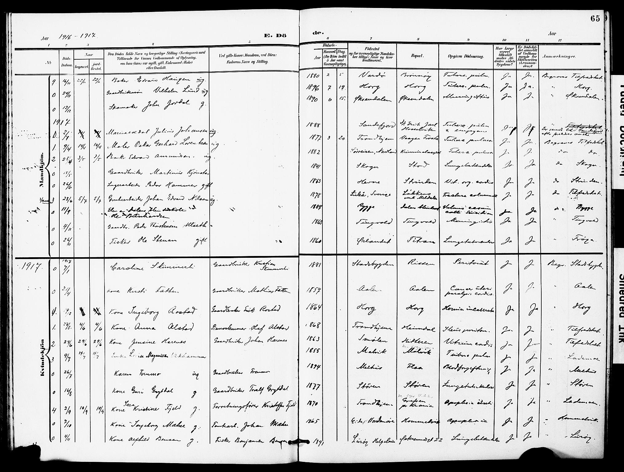 SAT, Ministerialprotokoller, klokkerbøker og fødselsregistre - Sør-Trøndelag, 628/L0483: Ministerialbok nr. 628A01, 1902-1920, s. 65