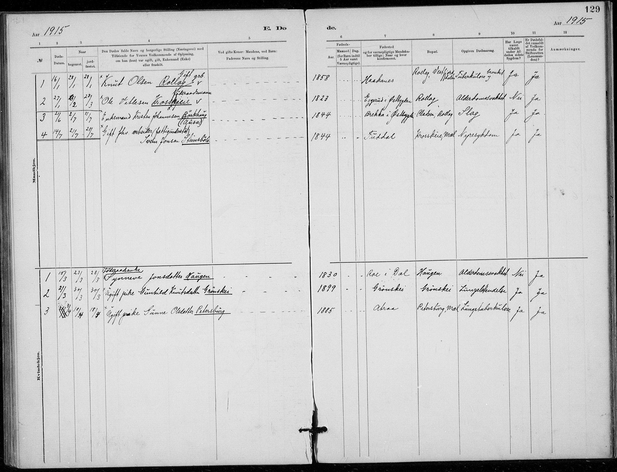 SAKO, Tinn kirkebøker, F/Fb/L0002: Ministerialbok nr. II 2, 1878-1917, s. 129