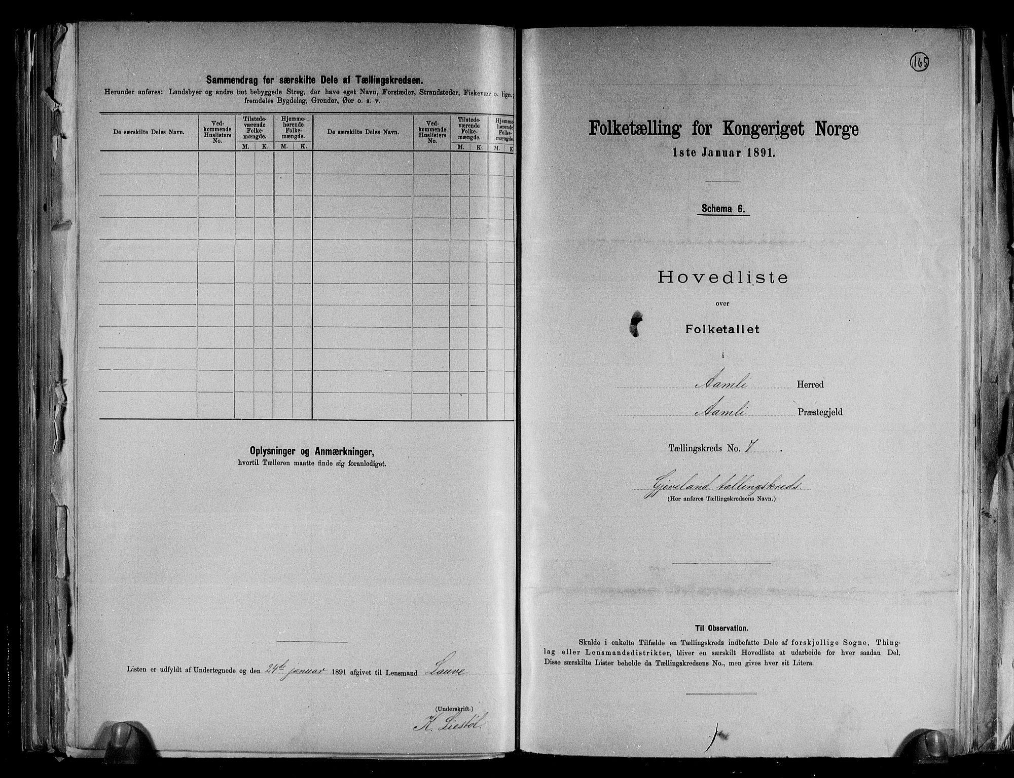 RA, Folketelling 1891 for 0929 Åmli herred, 1891, s. 17