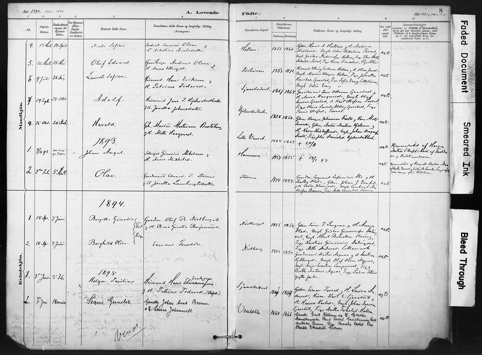SAT, Ministerialprotokoller, klokkerbøker og fødselsregistre - Nord-Trøndelag, 718/L0175: Ministerialbok nr. 718A01, 1890-1923, s. 8