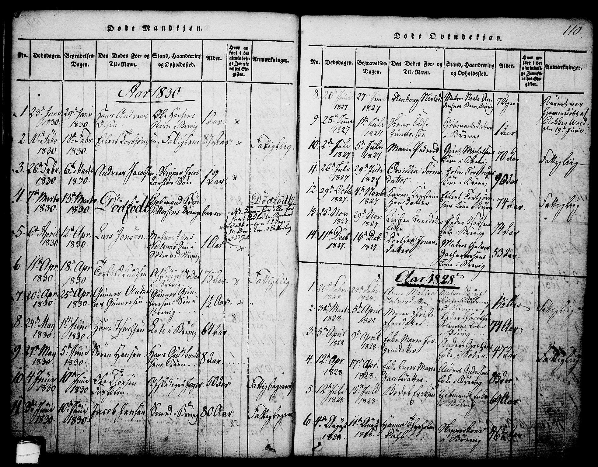 SAKO, Brevik kirkebøker, G/Ga/L0001: Klokkerbok nr. 1, 1814-1845, s. 110