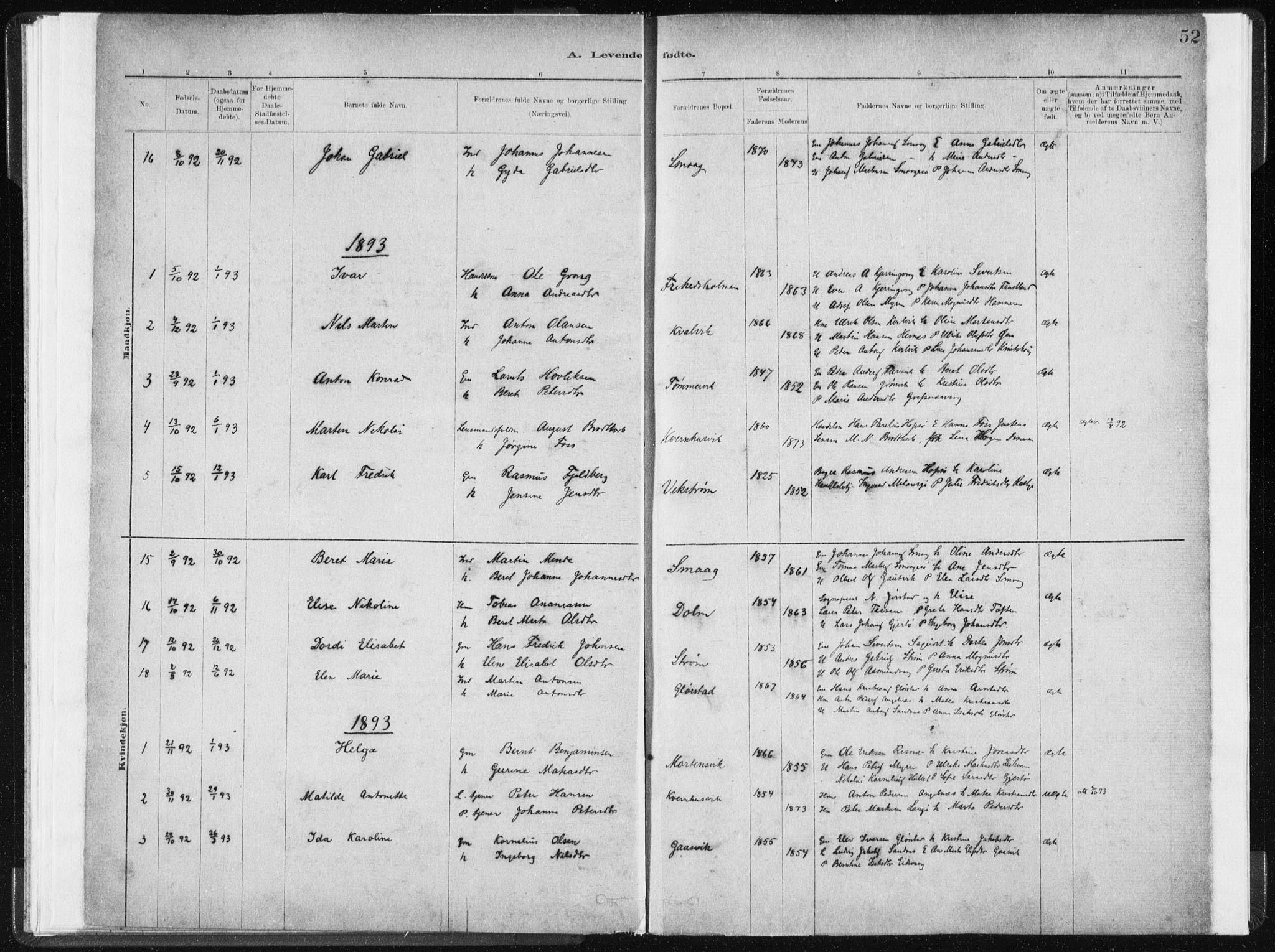 SAT, Ministerialprotokoller, klokkerbøker og fødselsregistre - Sør-Trøndelag, 634/L0533: Ministerialbok nr. 634A09, 1882-1901, s. 52