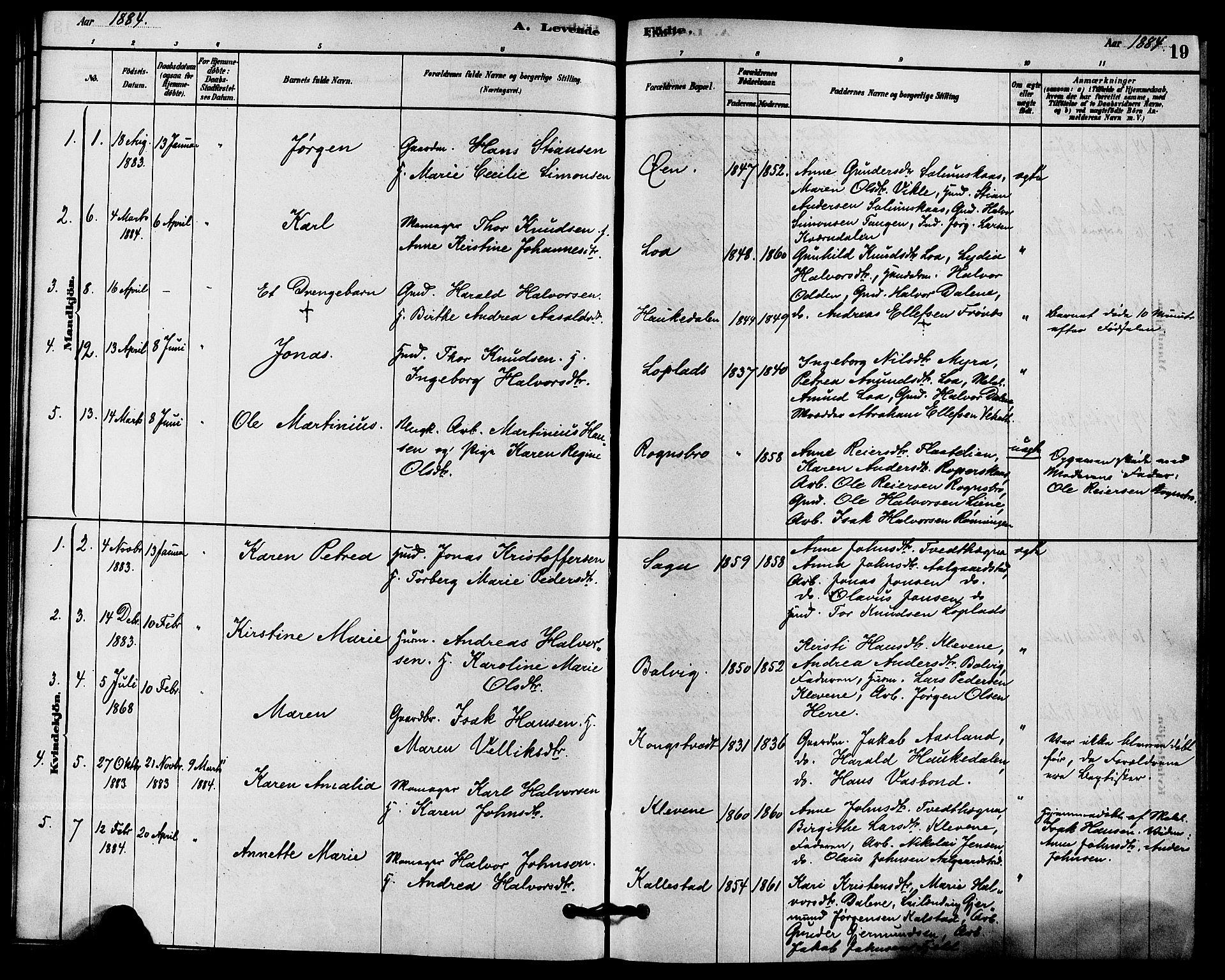 SAKO, Solum kirkebøker, F/Fc/L0001: Ministerialbok nr. III 1, 1877-1891, s. 19