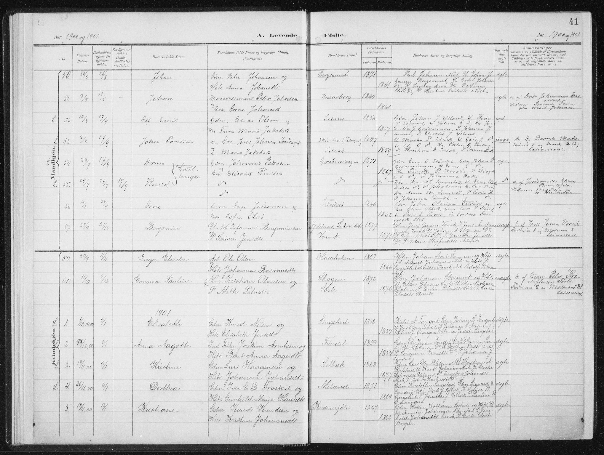 SAT, Ministerialprotokoller, klokkerbøker og fødselsregistre - Sør-Trøndelag, 647/L0635: Ministerialbok nr. 647A02, 1896-1911, s. 41