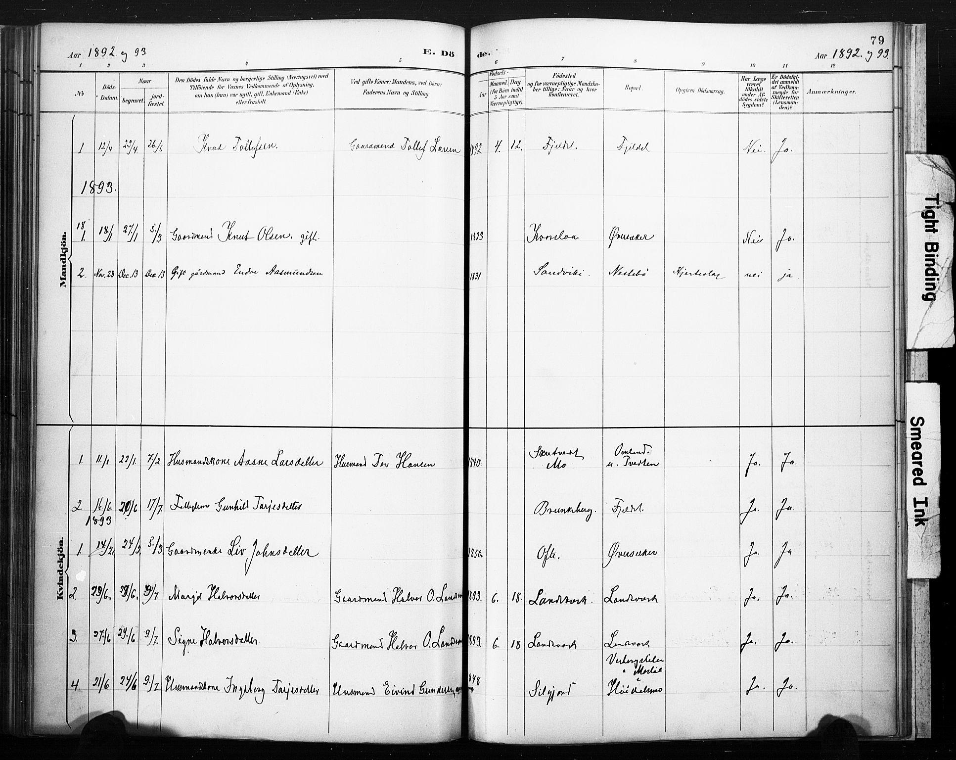 SAKO, Lårdal kirkebøker, F/Fc/L0002: Ministerialbok nr. III 2, 1887-1906, s. 79