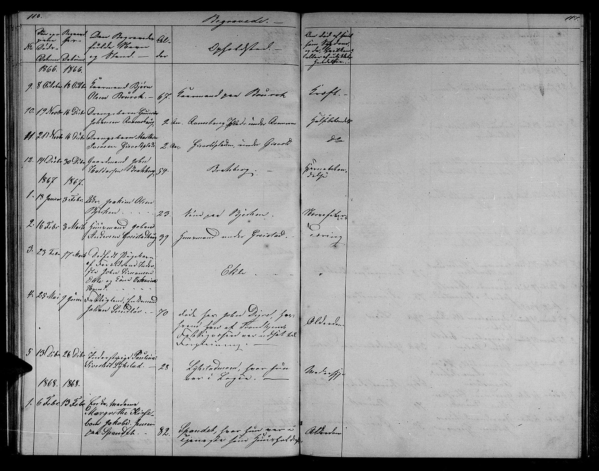 SAT, Ministerialprotokoller, klokkerbøker og fødselsregistre - Sør-Trøndelag, 608/L0340: Klokkerbok nr. 608C06, 1864-1889, s. 116-117