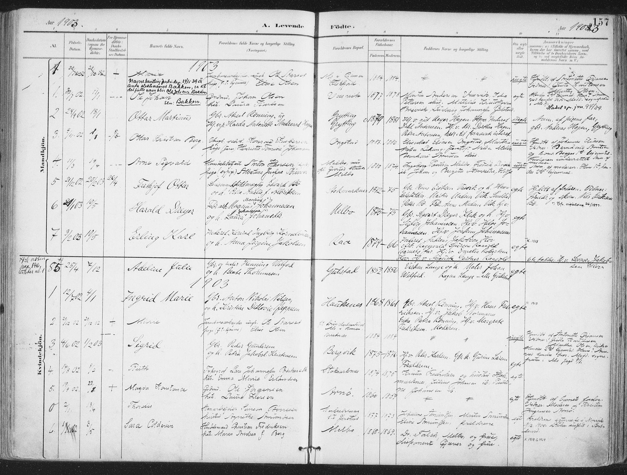 SAT, Ministerialprotokoller, klokkerbøker og fødselsregistre - Nordland, 888/L1246: Ministerialbok nr. 888A12, 1891-1903, s. 157