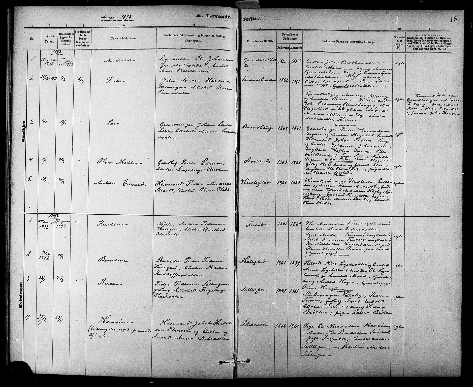 SAT, Ministerialprotokoller, klokkerbøker og fødselsregistre - Sør-Trøndelag, 618/L0452: Klokkerbok nr. 618C03, 1884-1906, s. 18