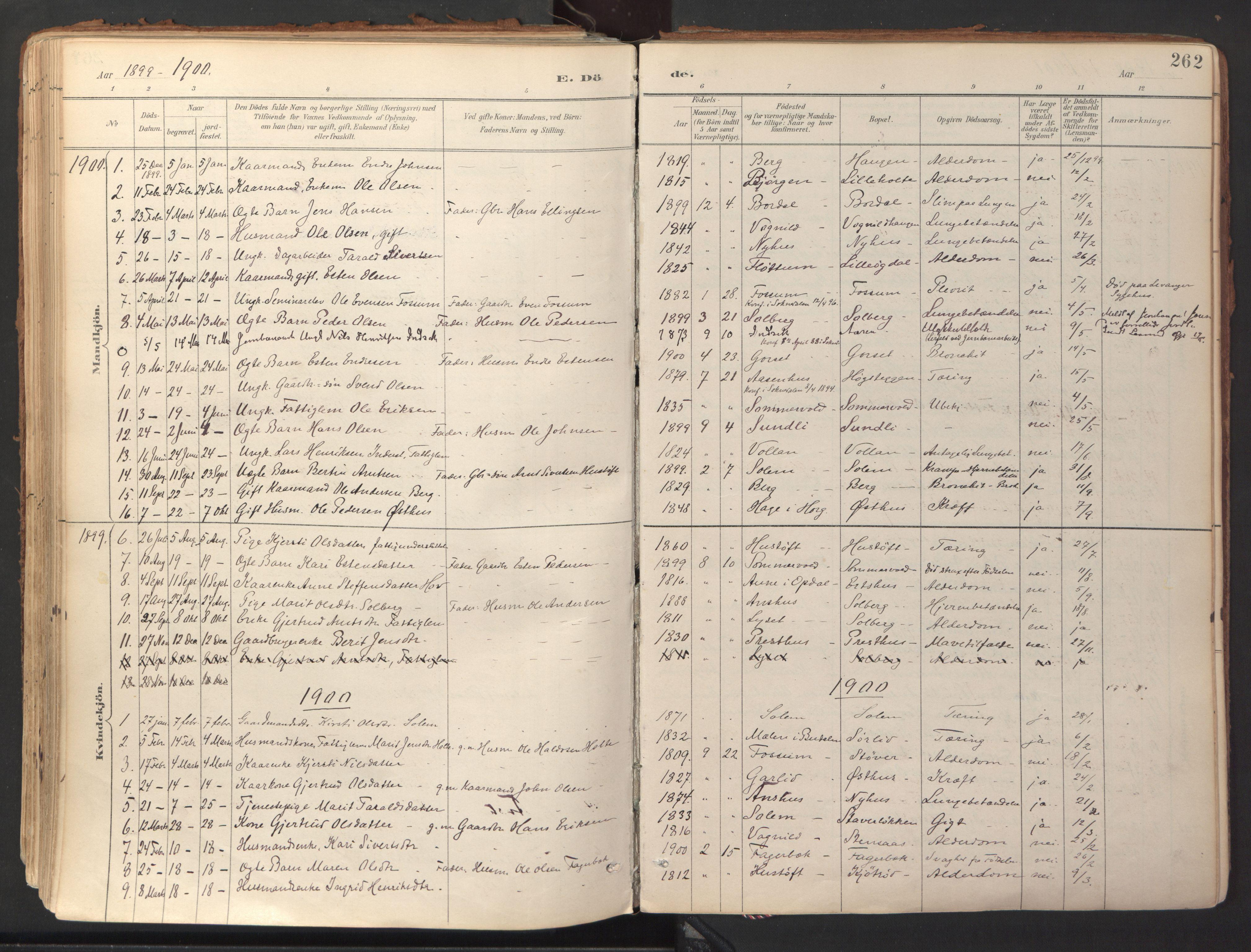 SAT, Ministerialprotokoller, klokkerbøker og fødselsregistre - Sør-Trøndelag, 689/L1041: Ministerialbok nr. 689A06, 1891-1923, s. 262
