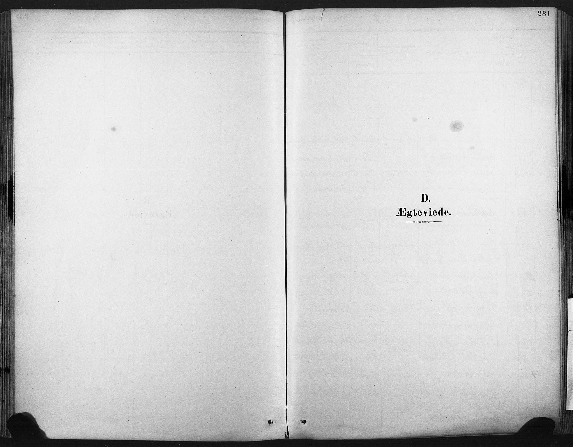 SAKO, Porsgrunn kirkebøker , F/Fa/L0008: Ministerialbok nr. 8, 1878-1895, s. 281