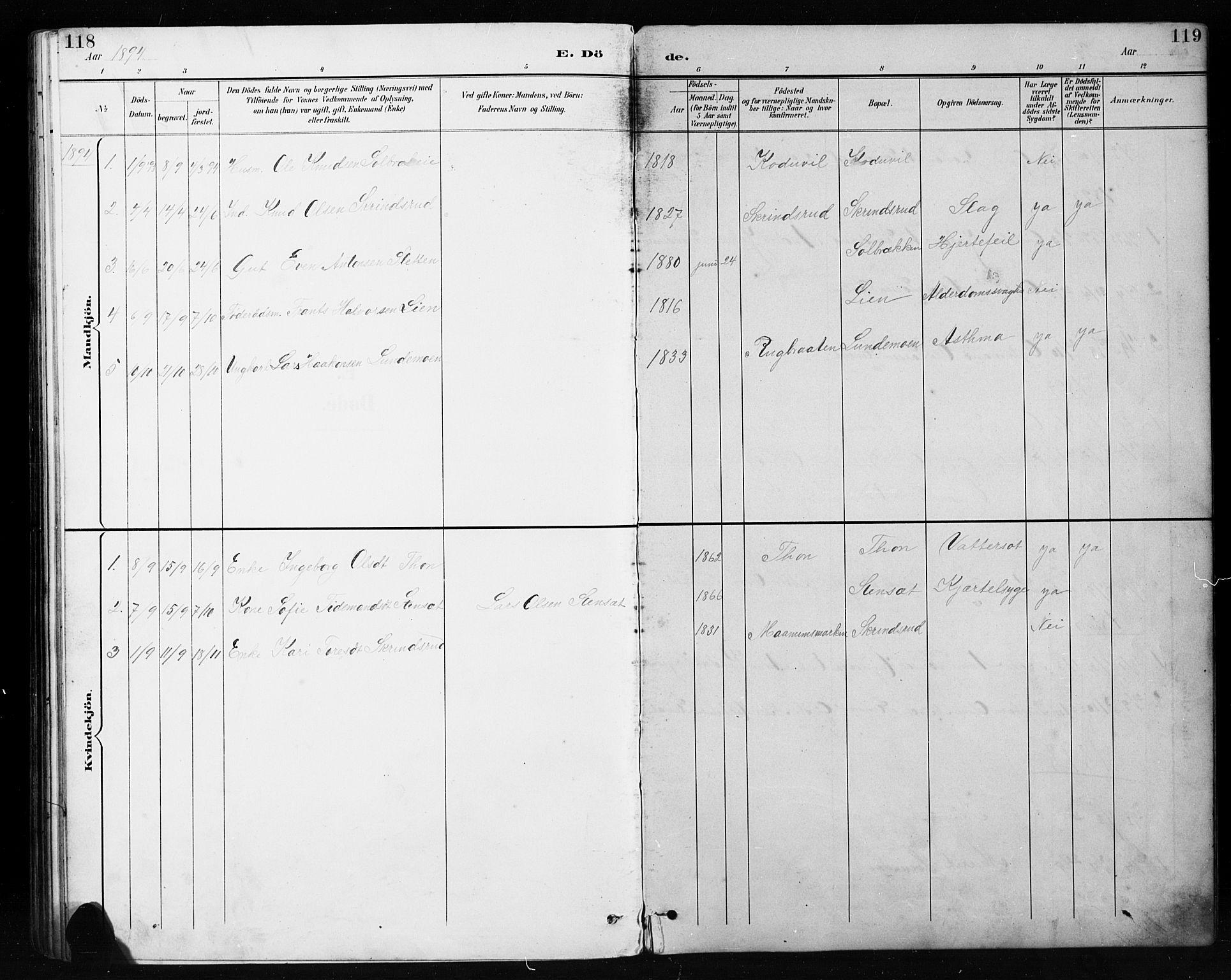 SAH, Etnedal prestekontor, H/Ha/Hab/Habb/L0001: Klokkerbok nr. II 1, 1894-1911, s. 118-119