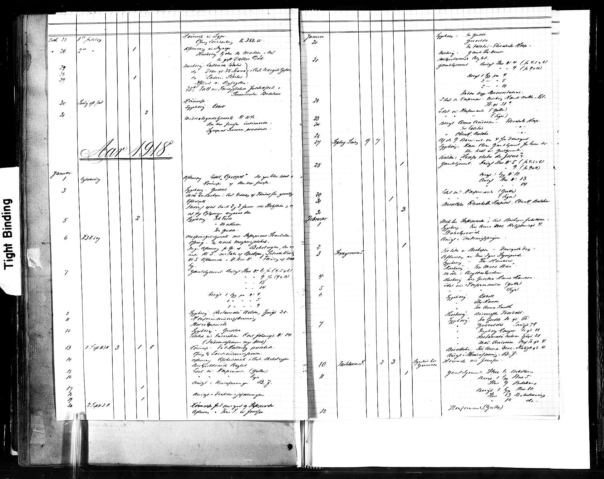 SAT, Ministerialprotokoller, klokkerbøker og fødselsregistre - Sør-Trøndelag, 602/L0119: Ministerialbok nr. 602A17, 1880-1901