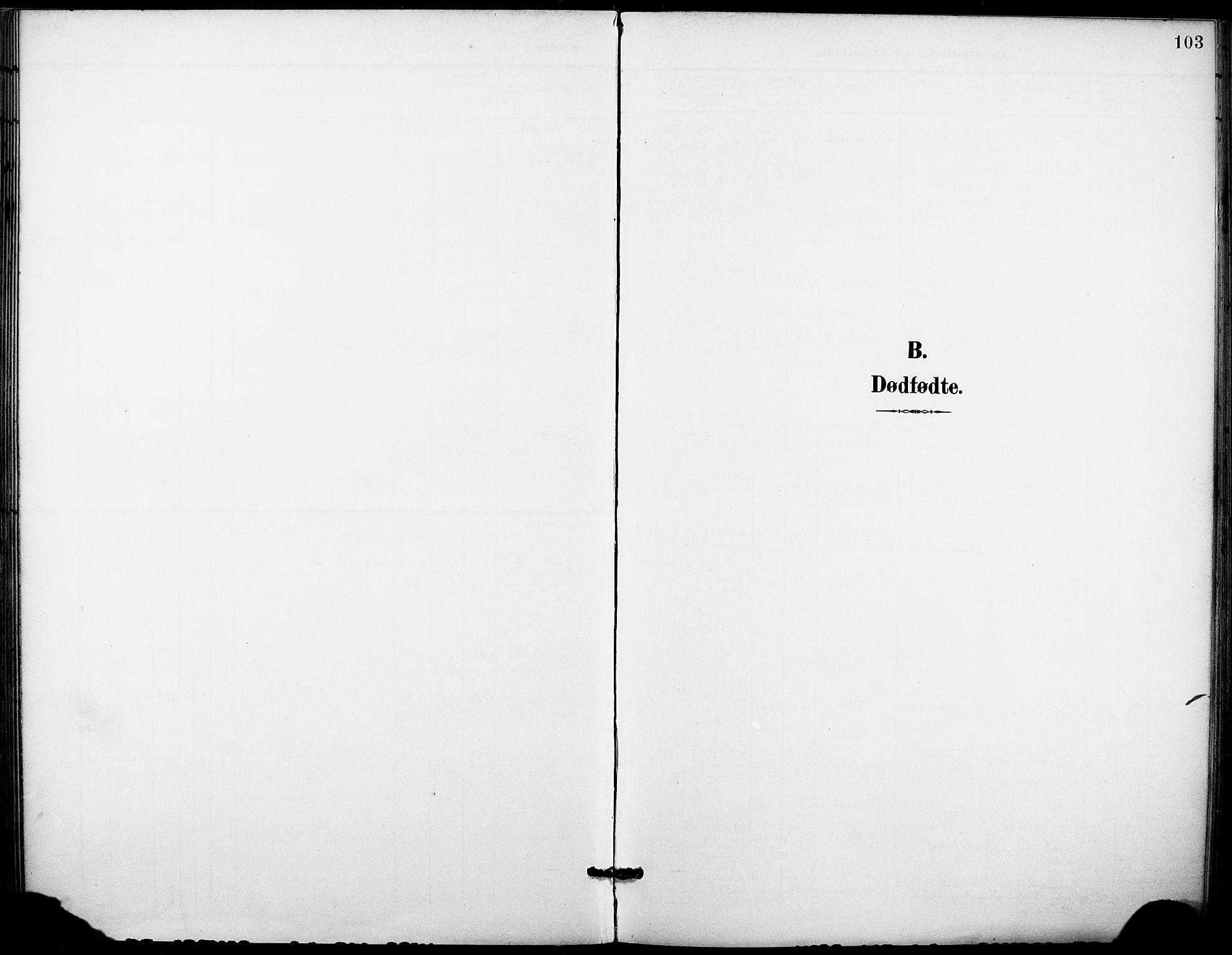 SAKO, Holla kirkebøker, F/Fa/L0010: Ministerialbok nr. 10, 1897-1907, s. 103