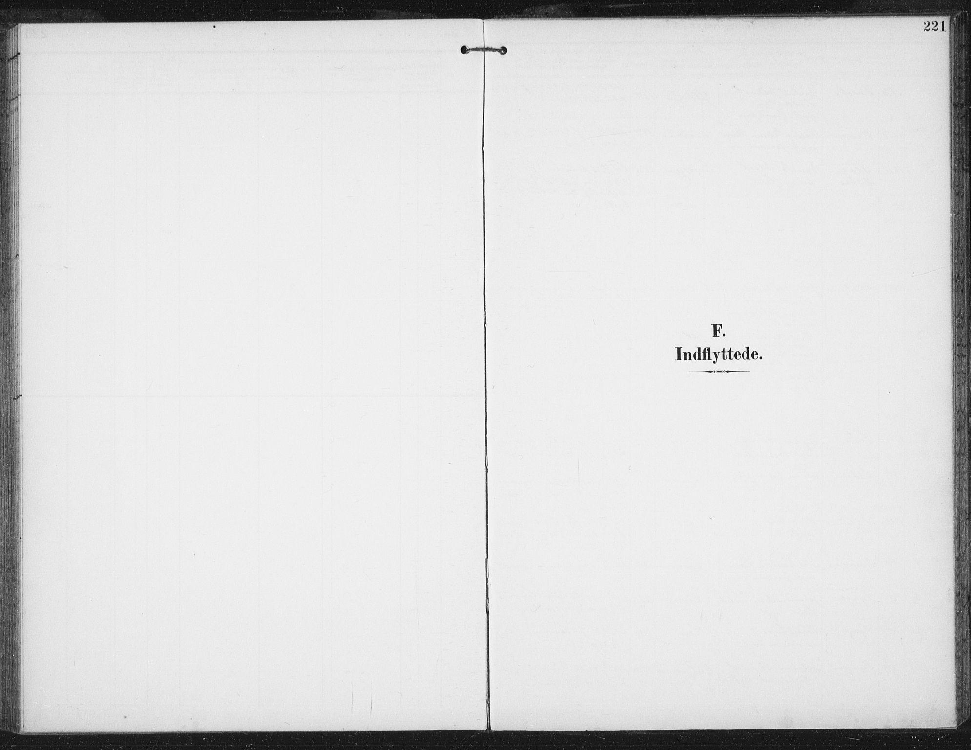 SAT, Ministerialprotokoller, klokkerbøker og fødselsregistre - Sør-Trøndelag, 674/L0872: Ministerialbok nr. 674A04, 1897-1907, s. 221